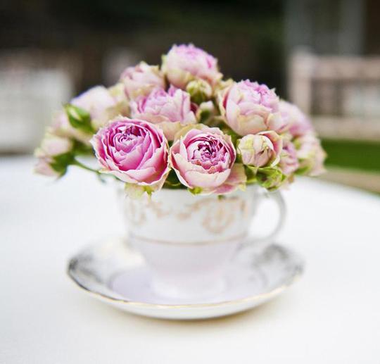 pink flowers in teacup